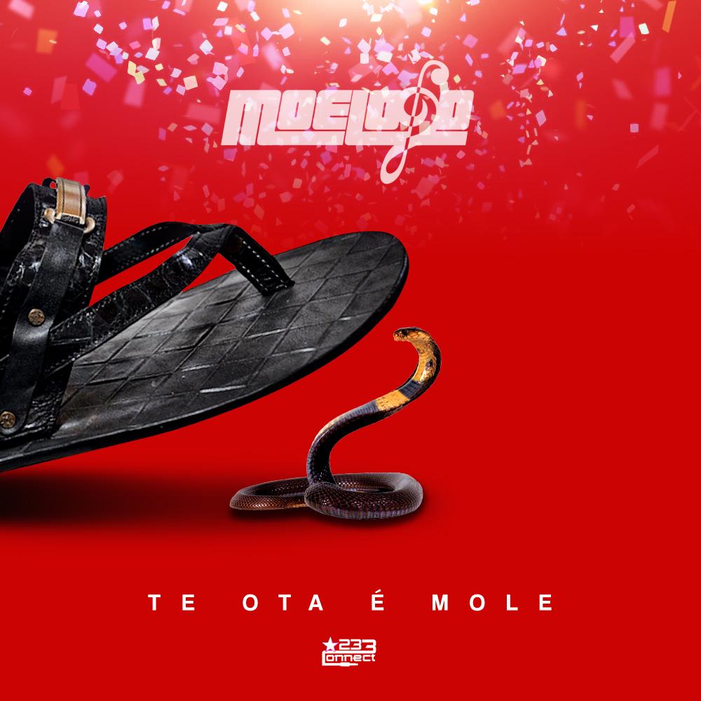 Moelogo Te Ota E Mole Artwork
